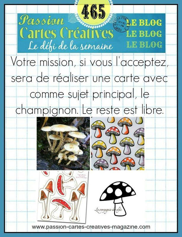 DEFI 465 DE PASSION CARTES CREATIVES