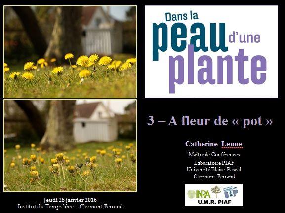 Conférence pour tous : A fleur de &quot&#x3B;pot&quot&#x3B;