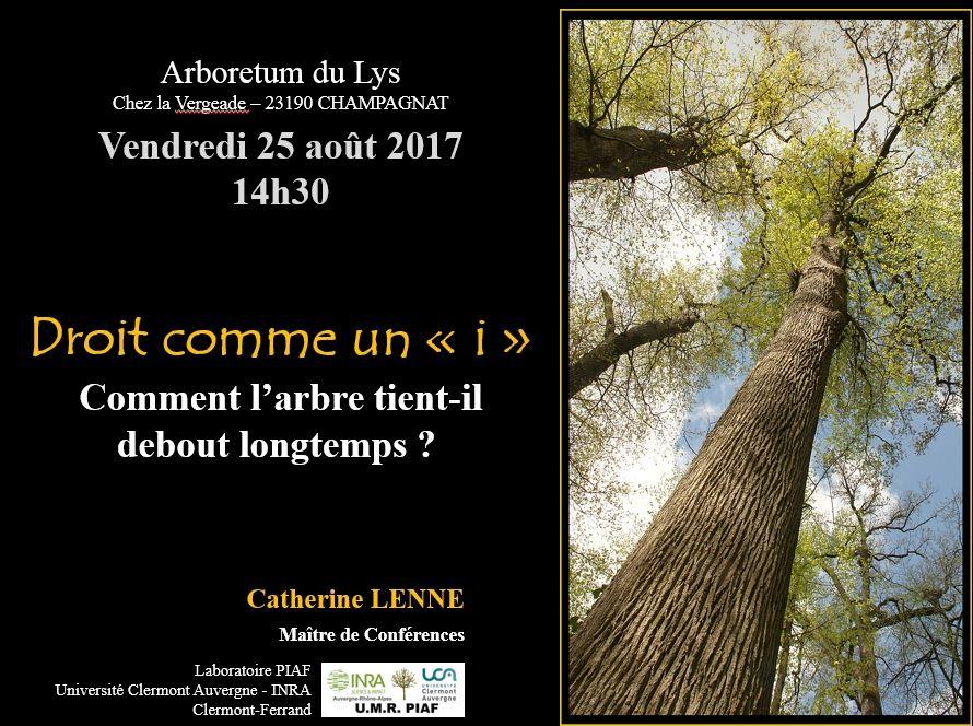 Arboretum du Lys, Creuse : des arbres droits comme des &quot&#x3B;i&quot&#x3B;