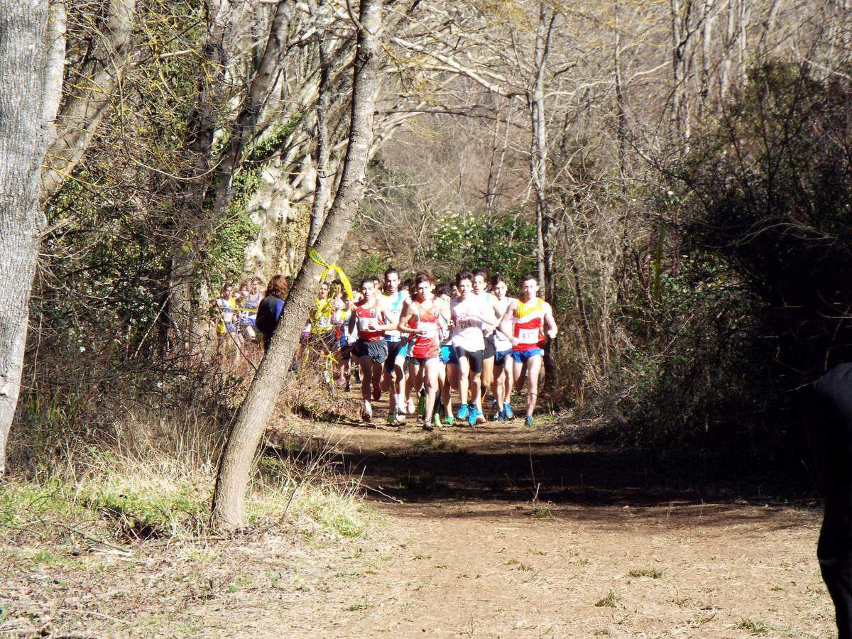Pré-France de Cross à Rocbaron (83)