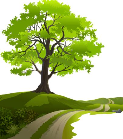 Découvrez le Bois de Brou-sur-Chantereine 77177