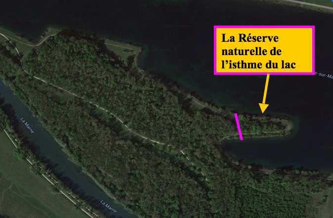 Création de la Réserve naturelle de l'isthme du lac de Chelles-Vaires