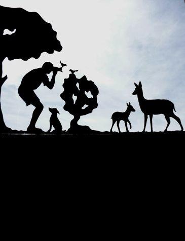 Girouette photographe animalier