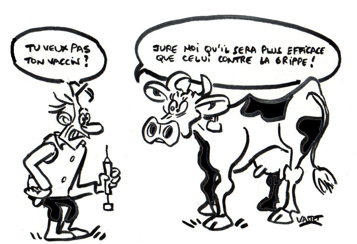 Pourquoi les éleveurs ne veulent plus vacciner ?
