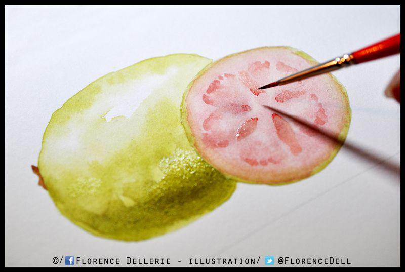 En cours : illustration de goyave à l'aquarelle