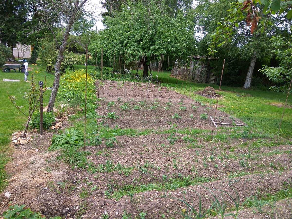 Bienvenue dans mon jardin le blog des travaux de nefastseven for Bienvenue dans mon jardin