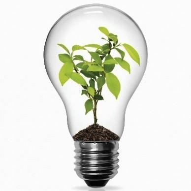 LEDs, radiateurs et croissance verte