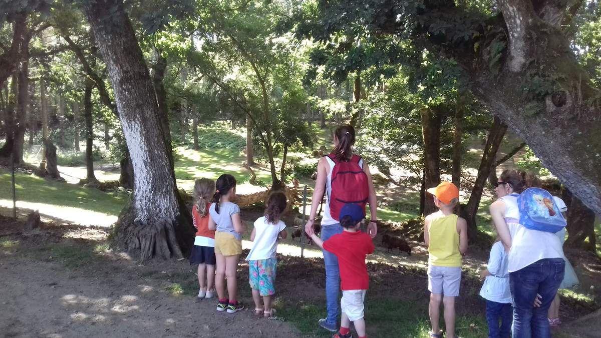 Sortie scolaire au Parc du Quinquis