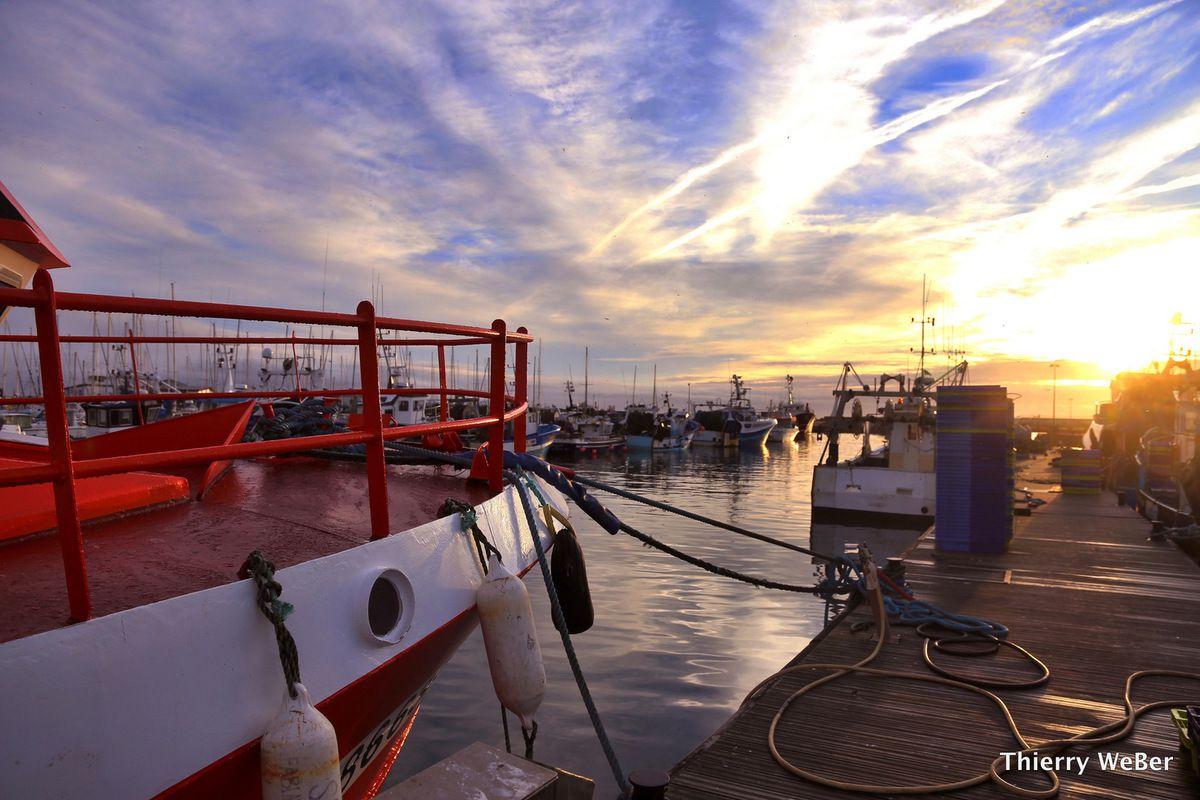Le port de La Turballe