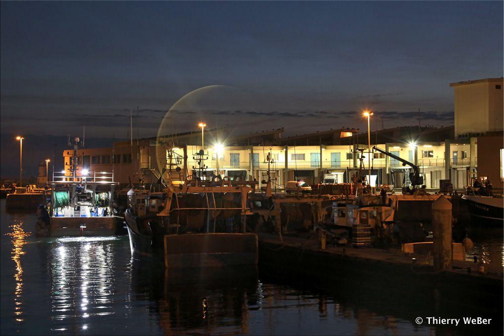 Le port de pêche de La Turballe de nuit