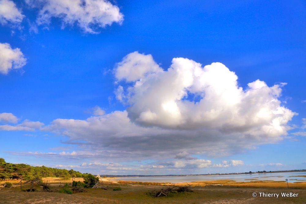 Du côté de Pen-Bron - Loire Atlantique