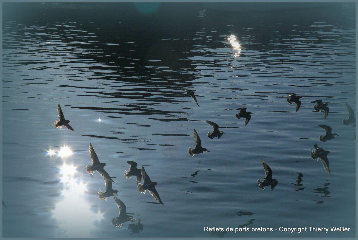 Les reflets de ports bretons