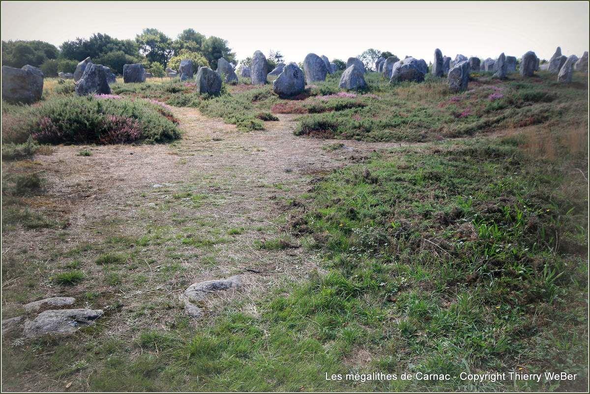 Carnac - Les alignements de Mégalithes