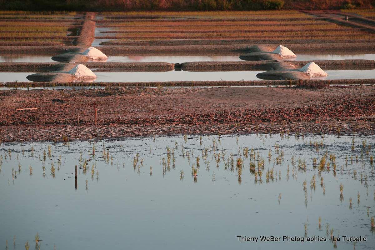 Crépuscule sur les marais-salants de la Presqu'Ile Guérandaise