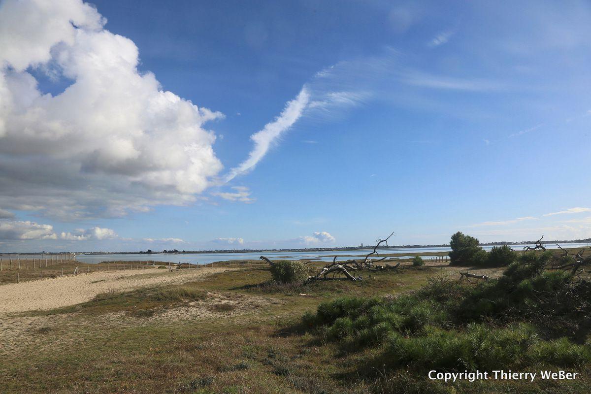 Le traict du Croisic à marée basse