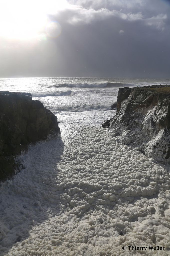 Ecume de Mer - Grande Côte au Pouliguen