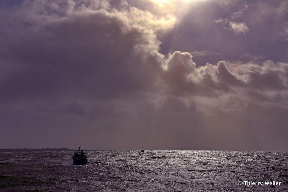 Les pêcheurs de La Turballe