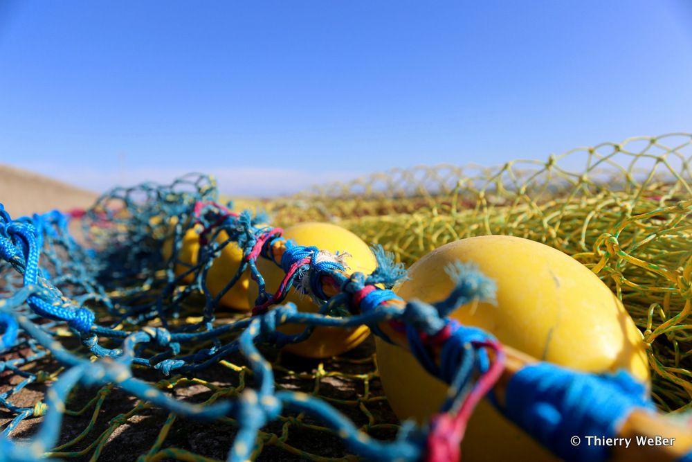 Séchage des filets de pêche - Port de La Turballe
