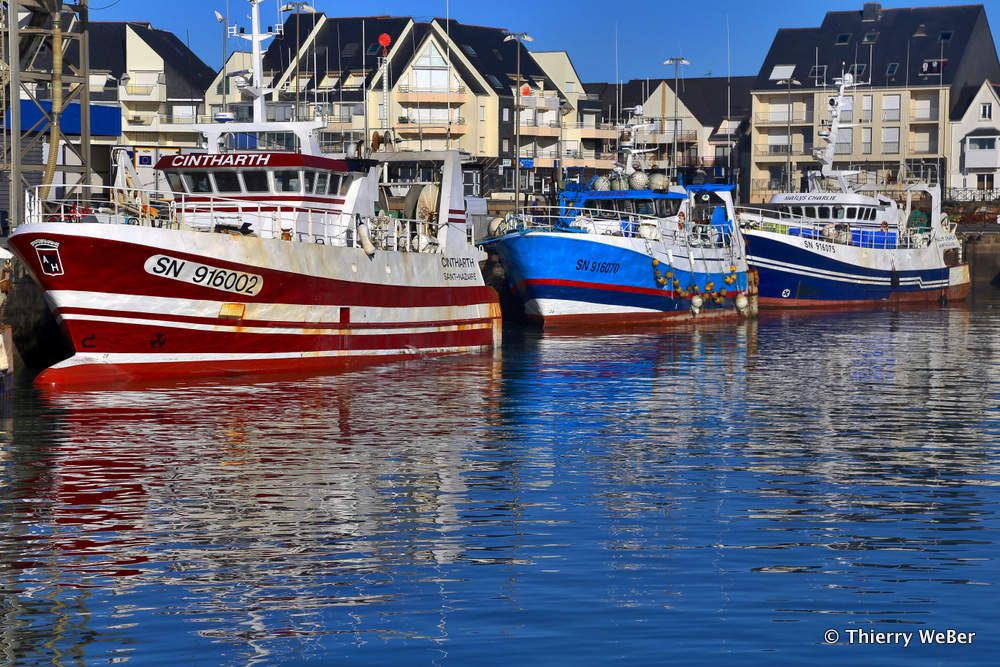 Les bateaux de pêche de La Turballe - Loire-Atlantique