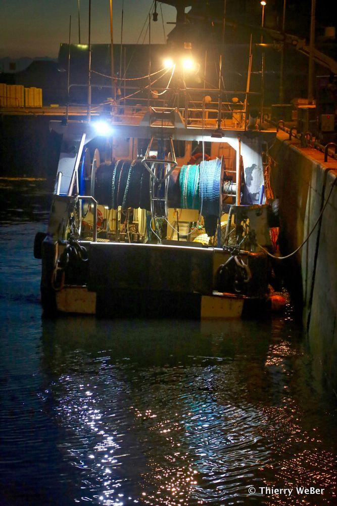 Retour de pêche et tri nocturne du thon