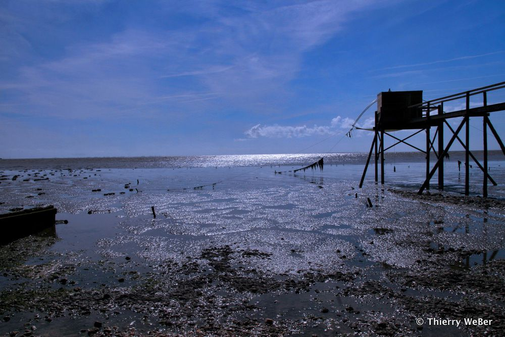 Les Pêcheries de la Côte de Jade - Bretagne Plein Sud