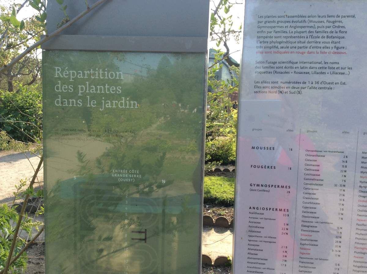 Jardin Alpin. Au jardin des plantes de Paris.