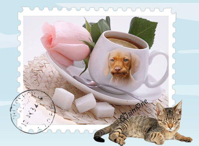 Do you mug me ?