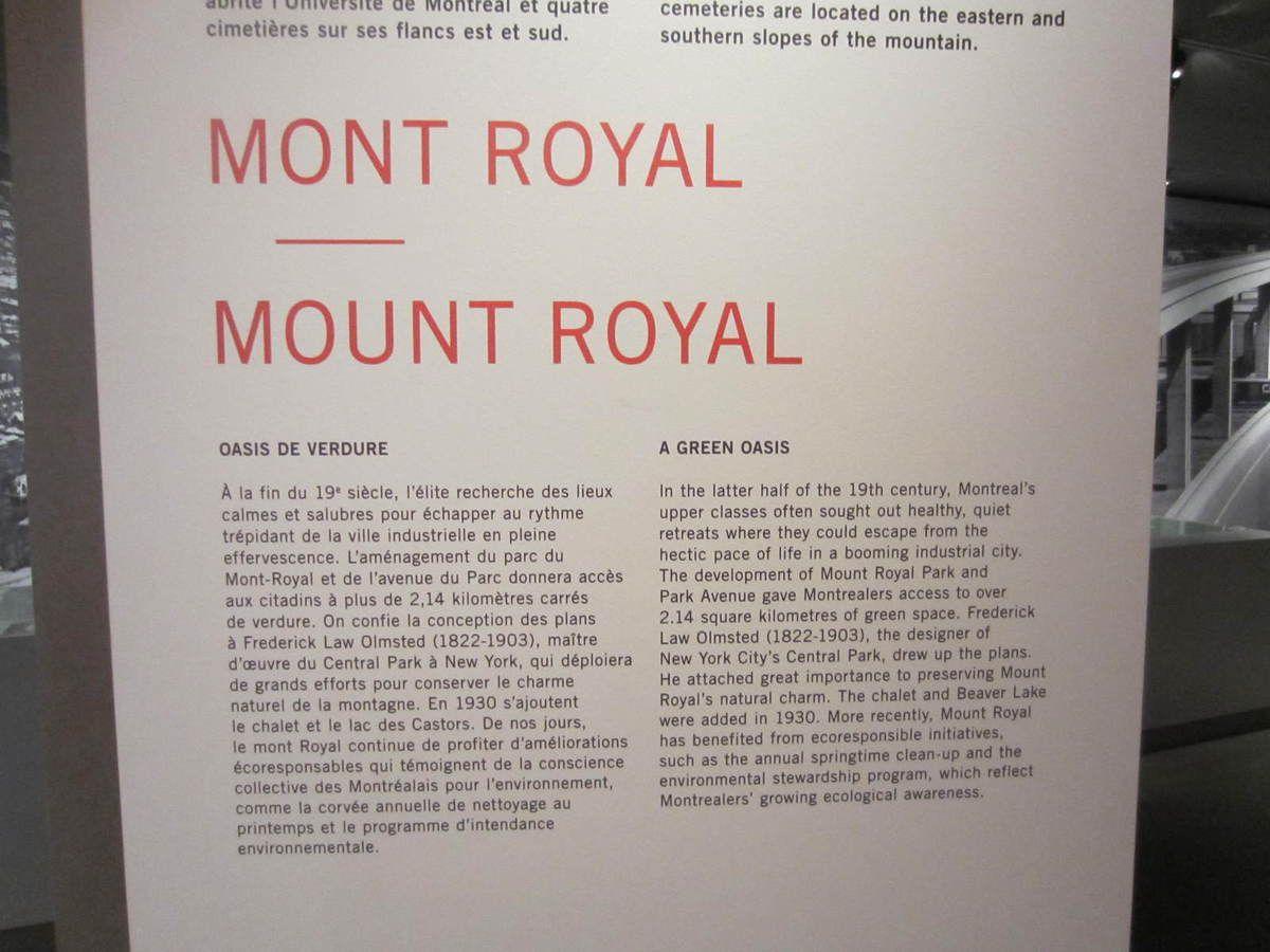 Montréal points de vue