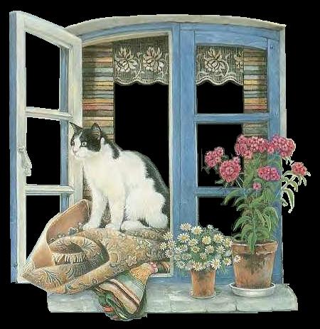 des chats dans la ronde de mai...volet images 1