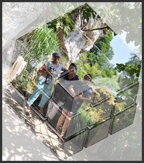 le Jardin des Fontaines Pétrifiantes, un joyau végétal de fleurs et d'eaux