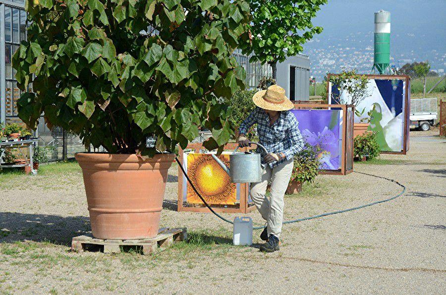 Provence le blog de freerider06 for Le jardin 489 rome
