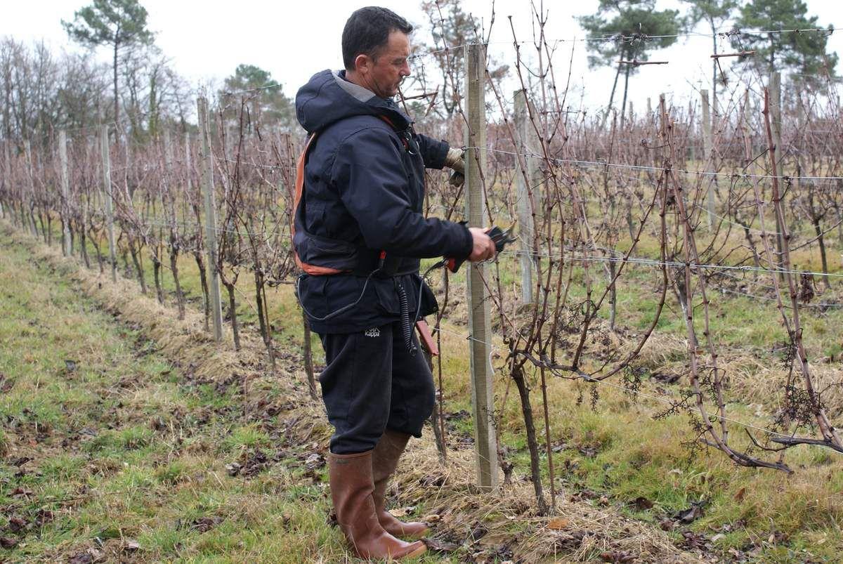 Vignerons, amitié et solidarité en Périgord Pourpre