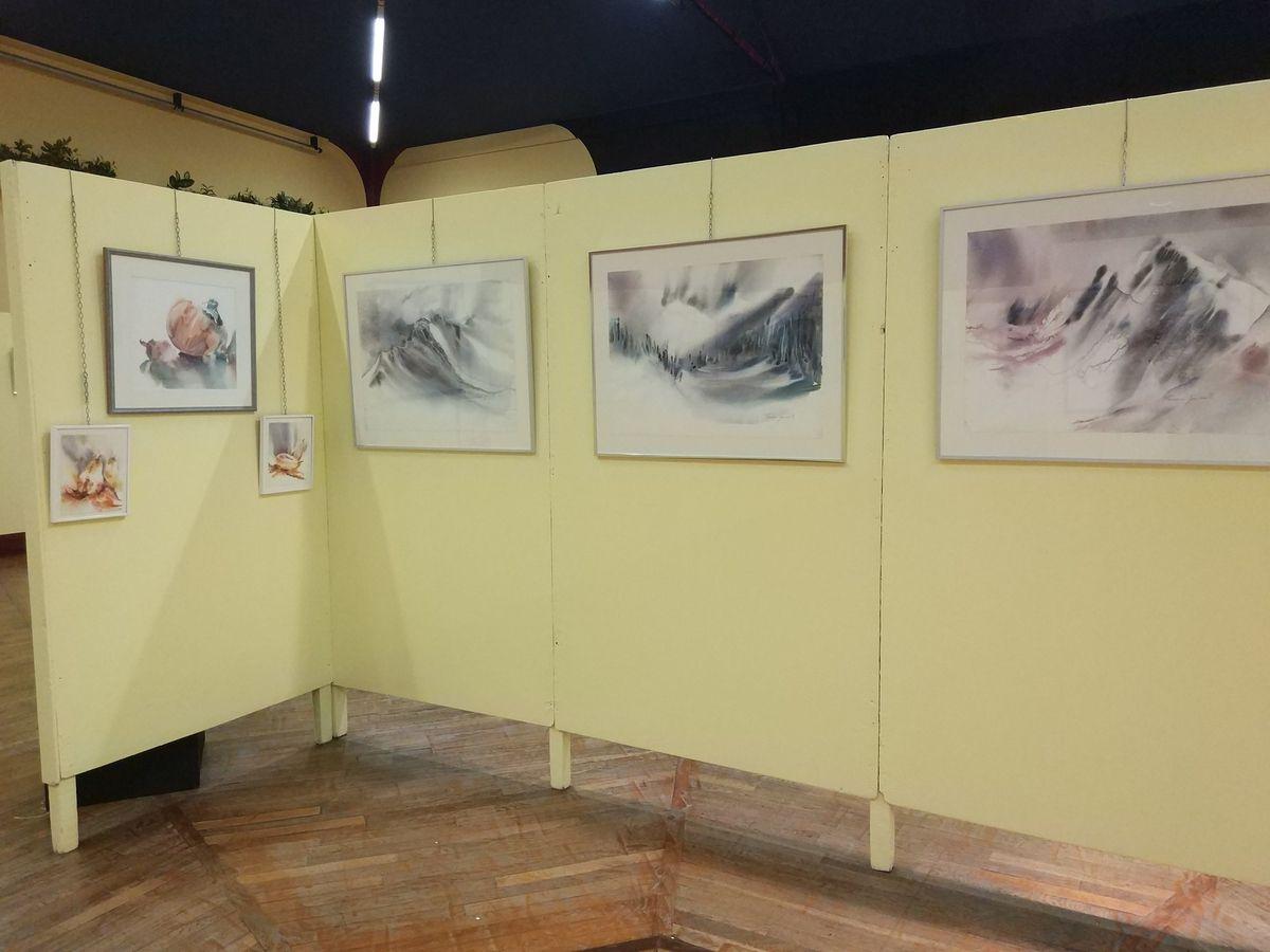 Aquarelle en Thiérache/ Biennale d'Aquarelle d'Hirson 2017