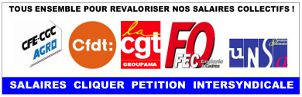 PETITION INTERSYNDICALE SALAIRES 2017