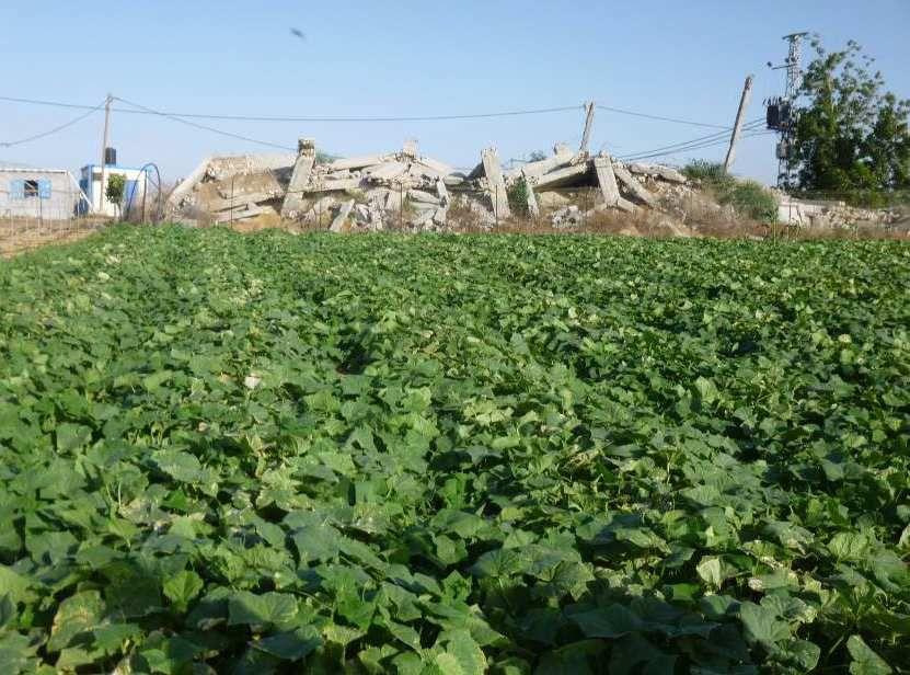Appel à soutien pour un château d'eau à Khuza'a (Gaza)
