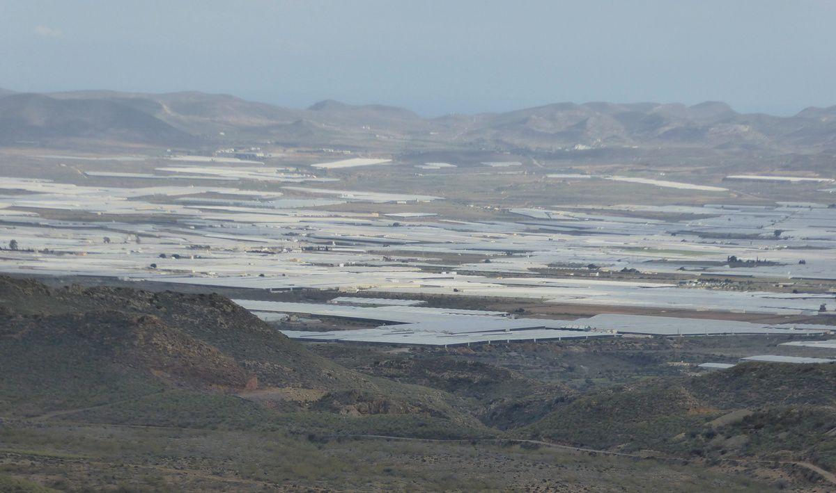 Dans la région d'Almeria avec Pascal Jarige, guide naturaliste (1)