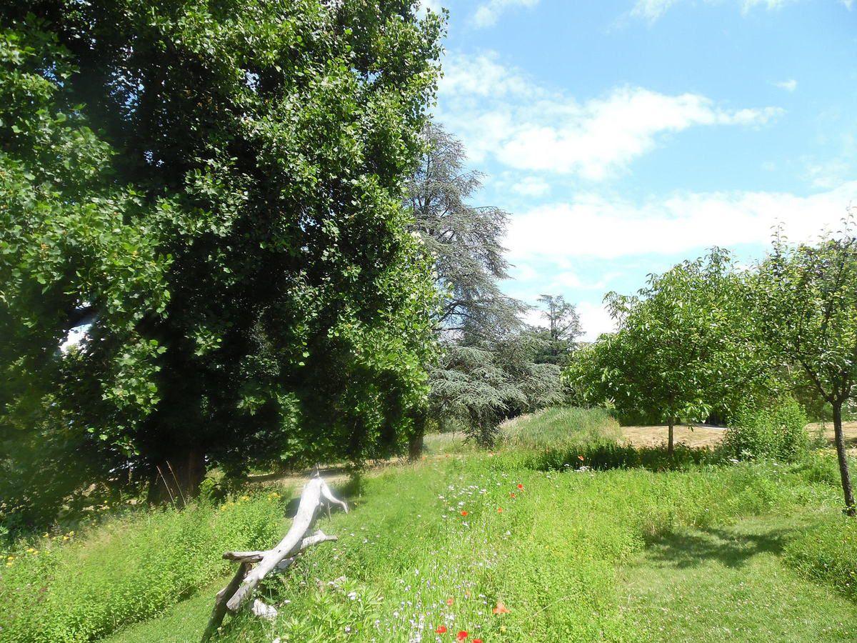 Jardin Pré curieux à Évian