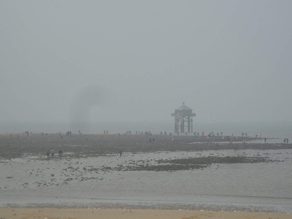 Week-end marée du siècle...