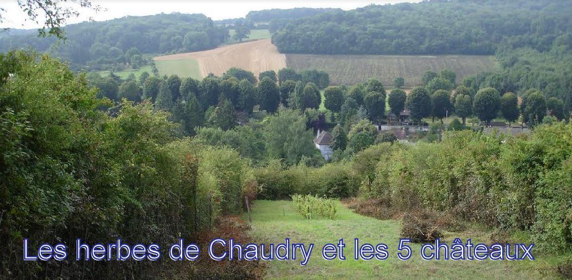 Les herbes de Chaudry et les 5 châteaux