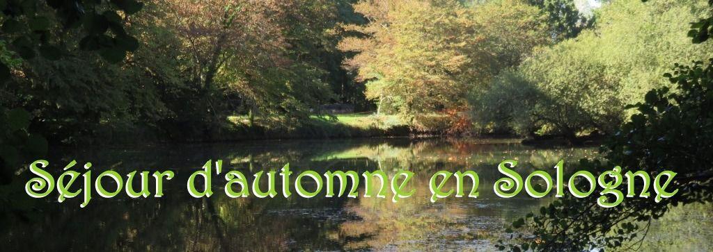 Séjour d'automne en Sologne