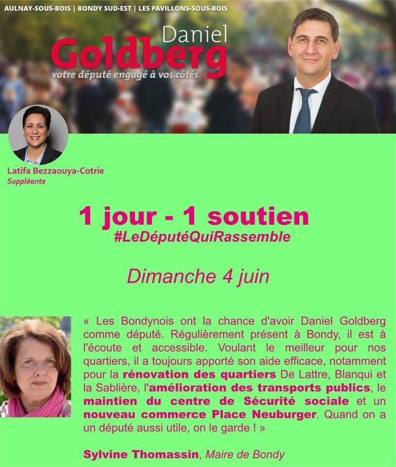 Vous aussi dès le 11 juin, votez pour Daniel Goldberg (12)