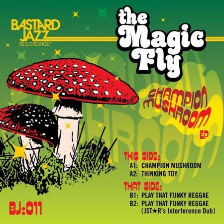 One track a day: PLAY THAT FUNKY REGGAE by Magic Fly