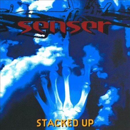 One track a day: AGE OF PANIC by Senser