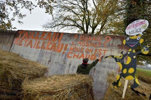 Le gouvernement repousse l'évacuation de la ZAD de Notre-Dame-des-Landes