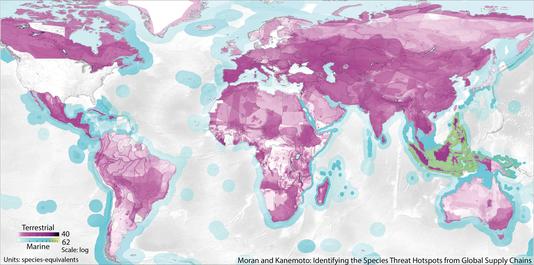 Les pressions exercées sur la biodiversité mondiale par les ÉTATS-UNIS. Le violet foncé montre les espèces terrestres les plus affectées et le vert celles maritimes. Keiichiro Kanemoto.