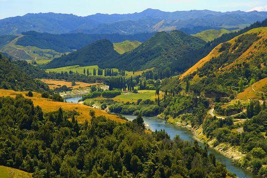 Le fleuve Whanganui, dans l'île du Nord, en Nouvelle-Zélande. JAMES SHOOK / CC-BY-2.5