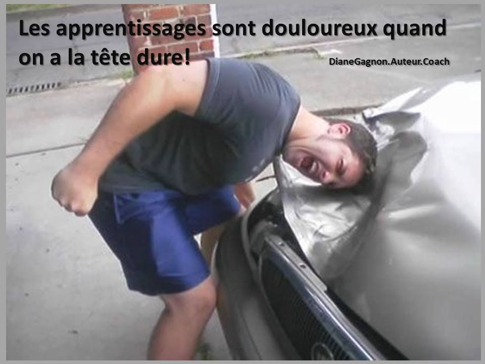 LA TÊTE DURE!