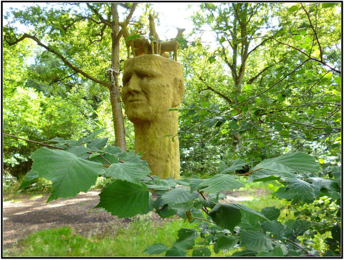 en forêt de Rougeau