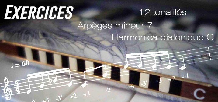 Exercices - Arpèges mineur 7 - Harmonica diatonique et chromatique