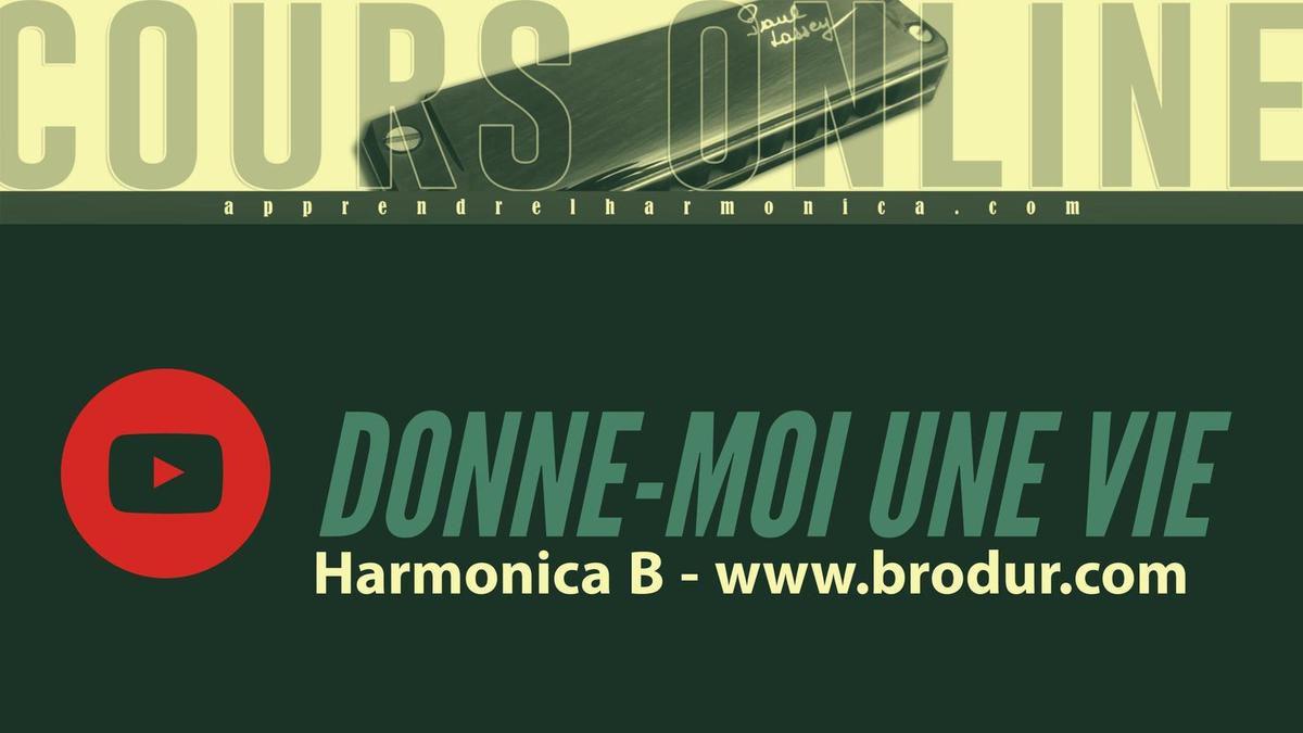 Donne-moi une vie - Yannick Noah - Harmonica B